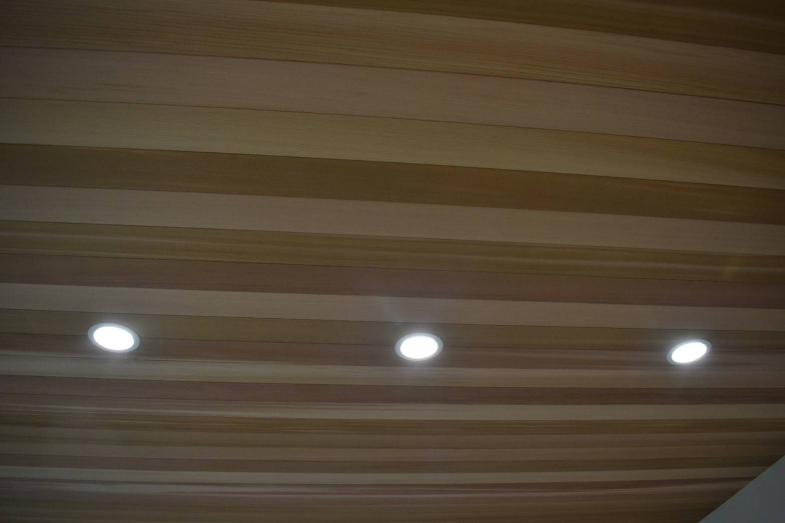 高木の家画像5